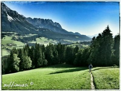 Traum-Trail Richtung Scheffau.