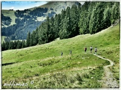 Trail statt Schotterpiste heißt es nun auch Richtung Hochbrixen.